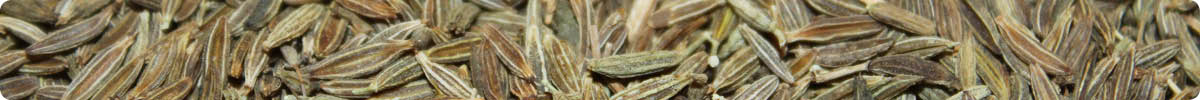 Close-up image of cumin seeds